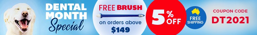 Dental Month Sale