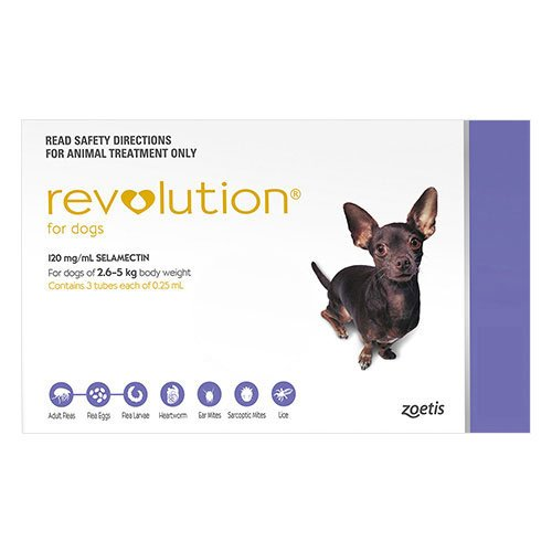 636891475623334610revolution-for-very-small-dogs-5-1-10-lbs-purple.jpg