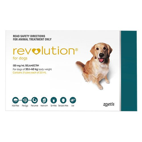 636891476408632529revolution-for-large-dogs-40-1-85lbs-green.jpg