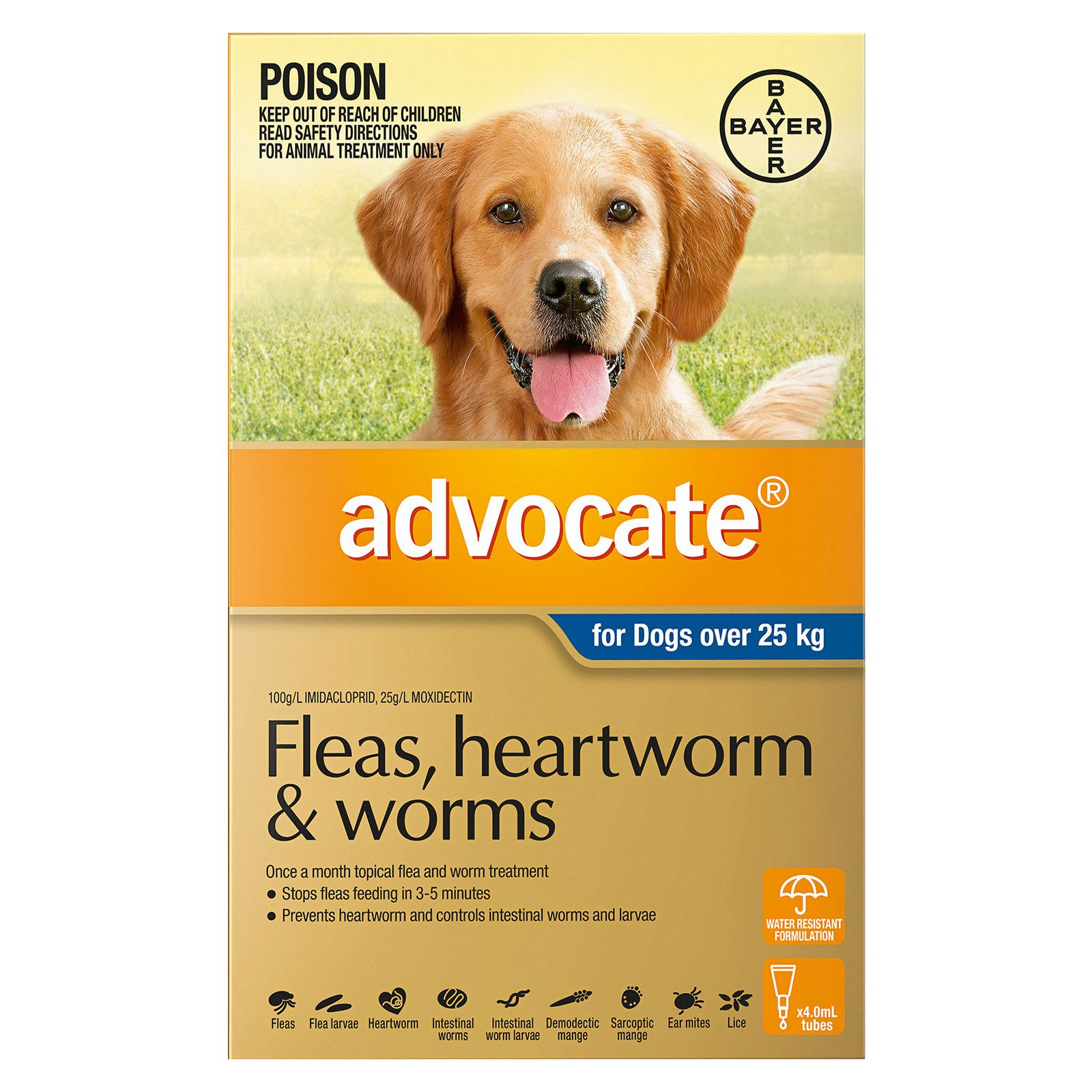 Advocate for Dogs Over 25 Kg (Extra Large Dogs) Blue
