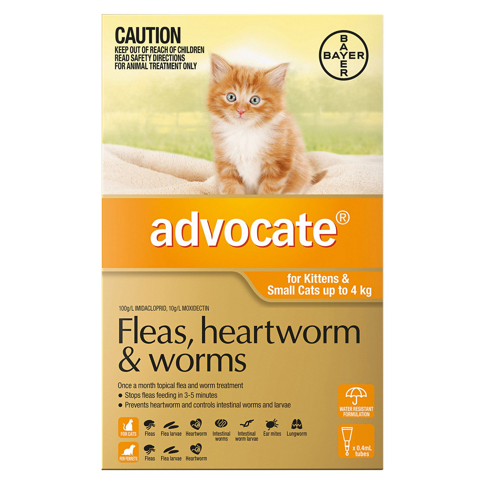 Advocate For Kittens & Small Cats Up To 4Kg (Orange)