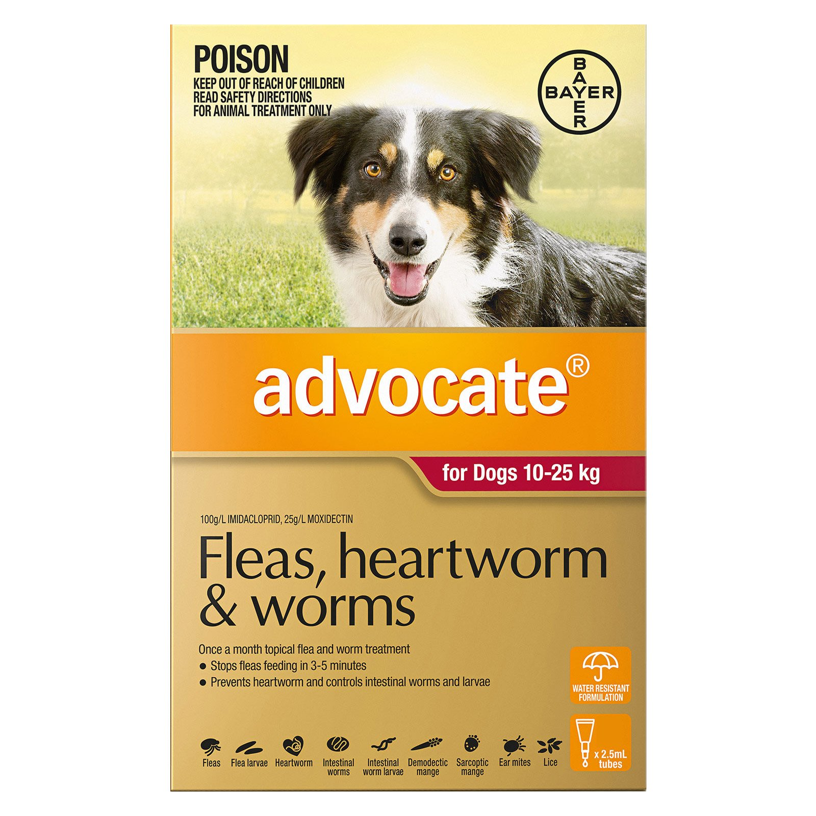 Advocate for Dogs 10 to 25 Kg (Large Dogs) Red