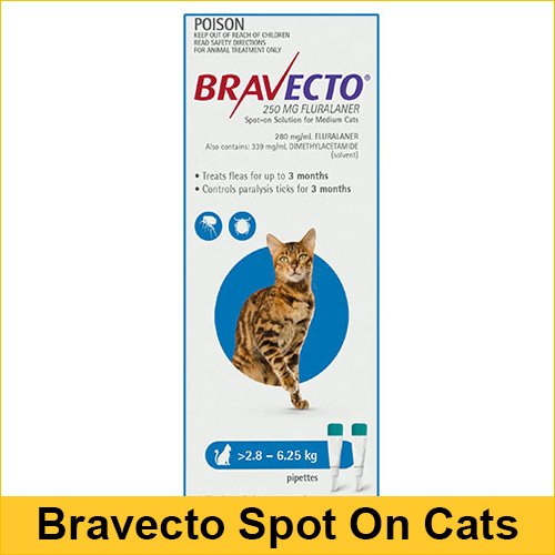 bravecto-for-cat-2.8-6.25kg-Blue-pipettes-1.jpg