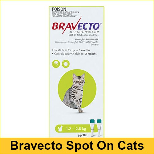 Bravecto Spot On For Small Cats (1.2 - 2.8 kg) Light Green