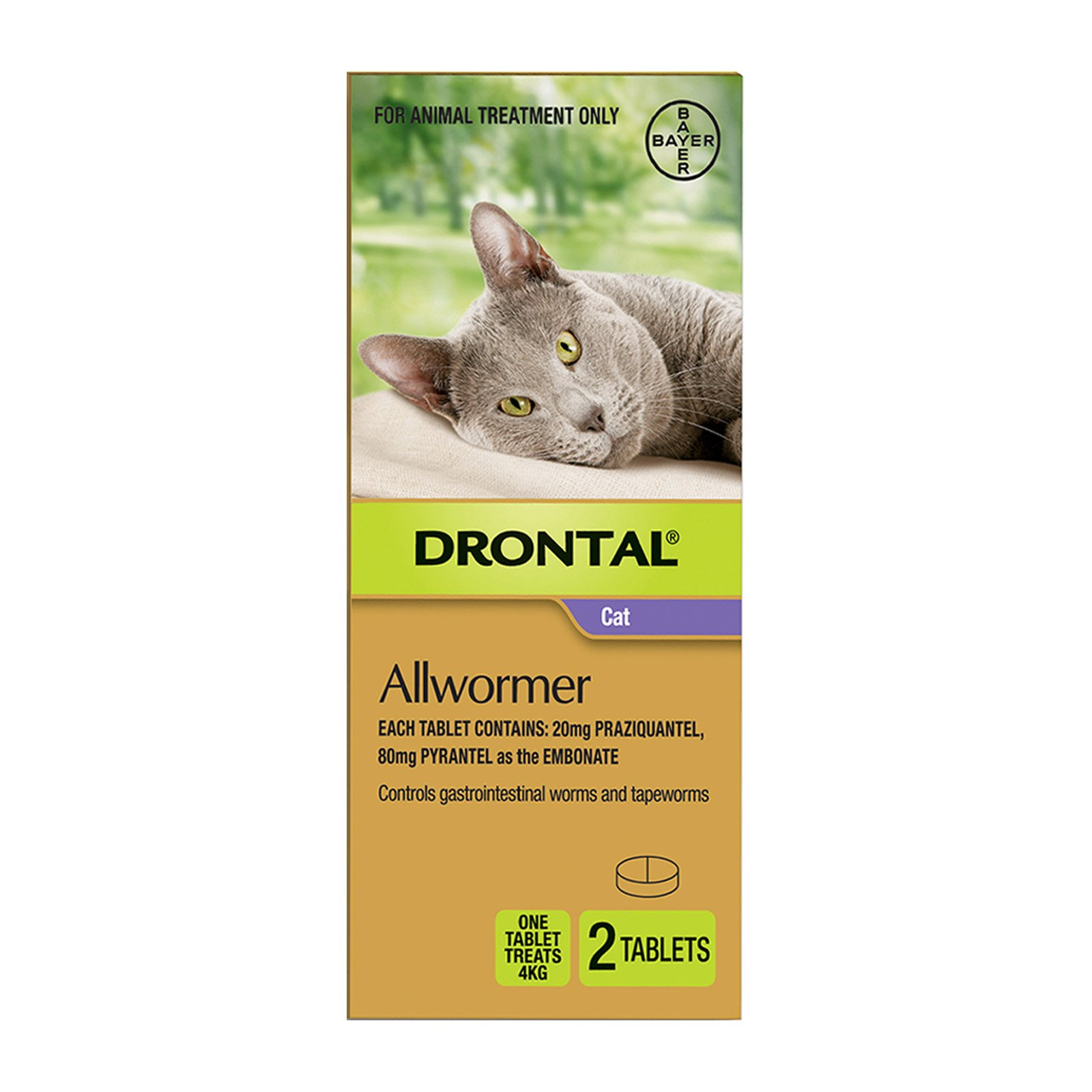 drontal-cat-allwormer-tablets-with-applicator-2-tablets-big.jpg