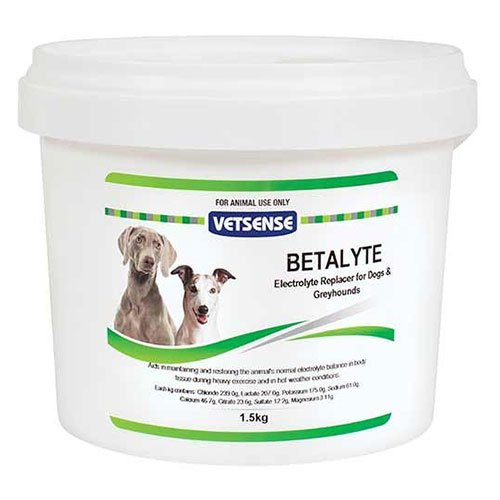 VetSense Betalyte Powder for Dogs and Greyhounds