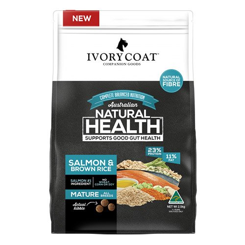 Ivory Coat Dog Mature Salmon and Brown Rice