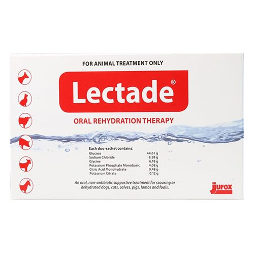 Lectade Oral Rehydration Therapy 64 Gms