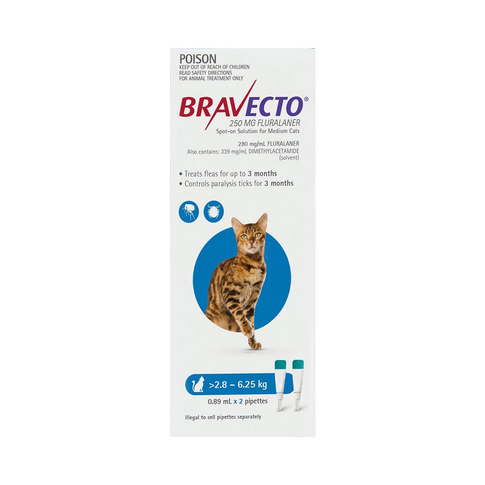 bvctoct-blue-64429.jpg